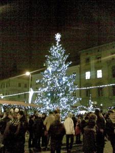 Vánoční strom 2009, Brno