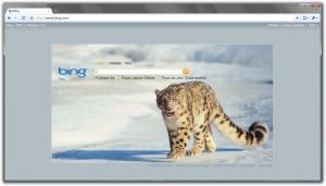 Vyhledávač Bing.com
